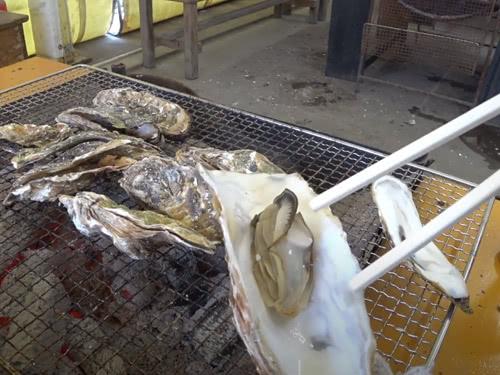 できあがった美味しい牡蠣を食べる